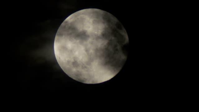 fullmåne på natthimlen över träd och moln - halloween background bildbanksvideor och videomaterial från bakom kulisserna