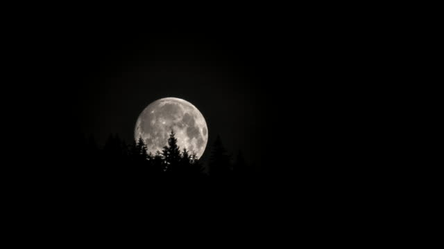 Full moon is floating in the night sky