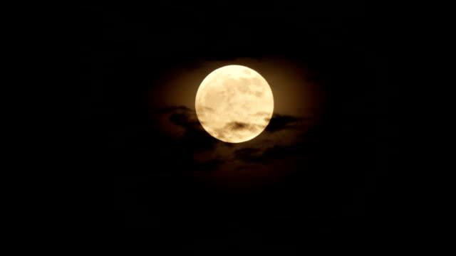 満月の夜  ビデオ