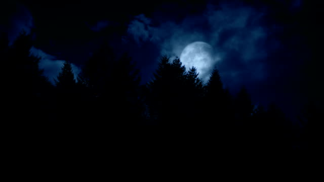 Full Moon Revealed Above The Trees Moon appears from behind the clouds in the forest count dracula stock videos & royalty-free footage