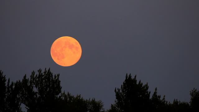 Full moon rise on dark twilight sky background video