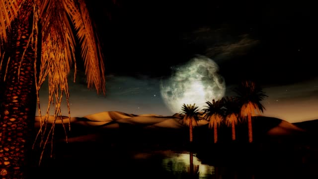 Full moon sunset desert oasis with palms and sand dunes (1295) Great for travel and adventure themes, nostalgia, exotic locations, environment, ancient cultures, romance and tourism, Sahara desert, wilderness, fantasy. More in my portfolio. desert oasis stock videos & royalty-free footage