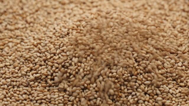Full of sesame seeds sprinkling