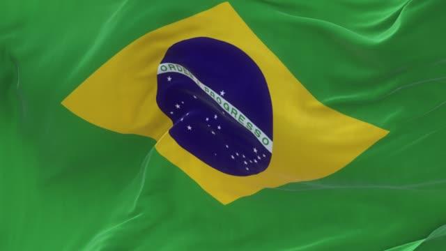 Bandeira Brasileira de tela cheia está acenando lentamente - vídeo