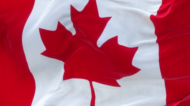 full screen canadian flag is waving slowly - canada flag stock videos & royalty-free footage