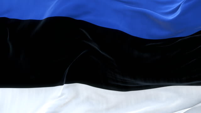 full screen estonia flag is waving slowly - politica e governo video stock e b–roll
