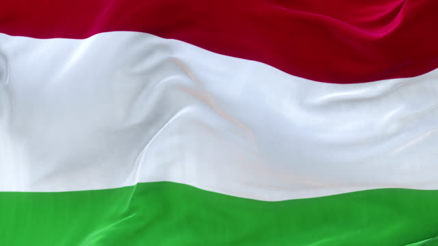 Full Screen Hungary Flag is Waving Slowly Loopable full screen Hungary flag is waving in slow motion. 3d rendering. hungary stock videos & royalty-free footage