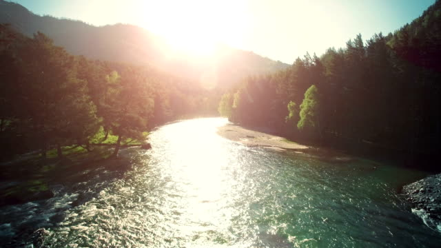 FullHD FHD aerial view. Low flight over fresh cold mountain river at sunny summer morning - vídeo