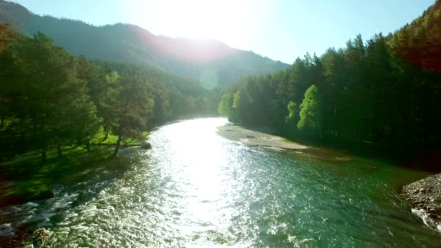 fullhd fhd aerial view. low flight over fresh cold mountain river at sunny summer morning - trees in mist stock videos & royalty-free footage