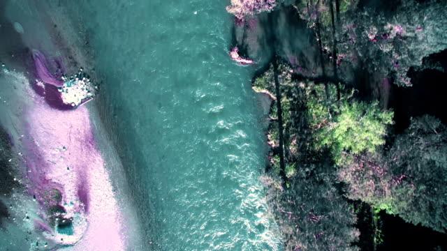 full hd fhd luftaufnahme. niedrige flug über frischen kalten berges fluss im sonnigen sommer morgen - süßwasser stock-videos und b-roll-filmmaterial