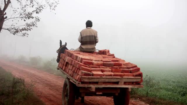 Fully loaded of donkey cart of bricks video