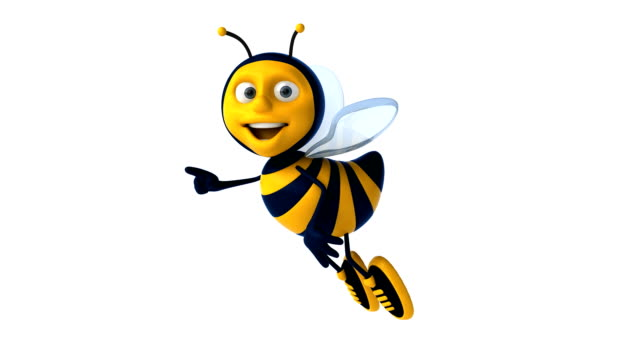 Fun bee​ video