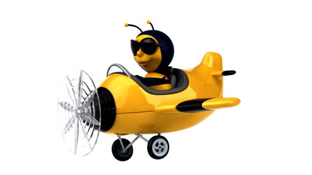 Fun bee video