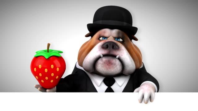 Fun bulldog - 3D Animation