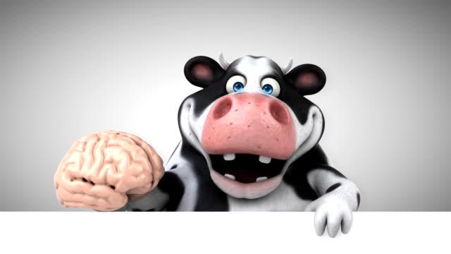 lustige kuh - 3d animation - inneres organ eines tieres stock-videos und b-roll-filmmaterial