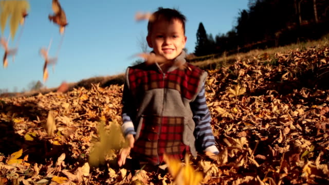 Fun with leaves. video