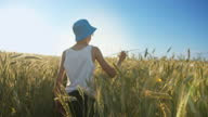 istock funny boy in a hat playing with airplane in wheat field, boy dreams of being a pilot 1284806136