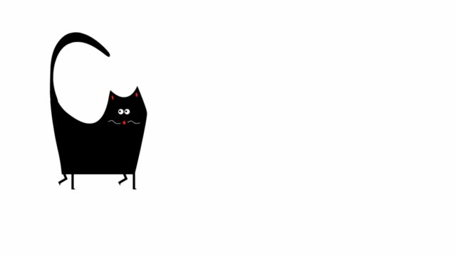 Funny cat walking