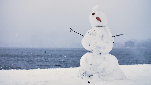 vídeos y material grabado en eventos de stock de divertido dirty deformado hombre de nieve zanahoria nariz lago fondo invierno tormenta de nieve grandes copos de nieve - snowman
