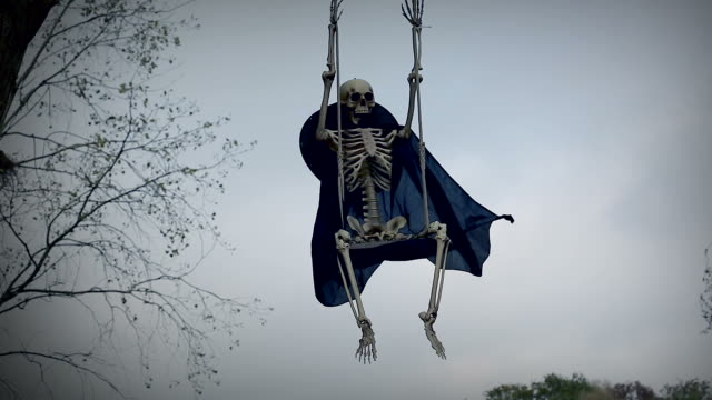 Funny Skeleton On Swing video