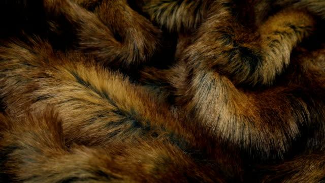 Fur Coat Detail Moving Shot Closeup moving shot of a luxurious fur coat fur stock videos & royalty-free footage