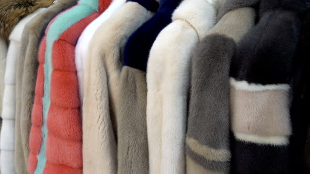 Fur coats hang on hangers in a row.