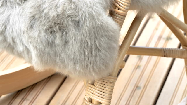 A fur cover of the chair in the living room