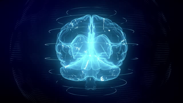 vídeos de stock e filmes b-roll de futuristic blue digital brain seamless loop. neurons firing in mri scan - cérebro humano