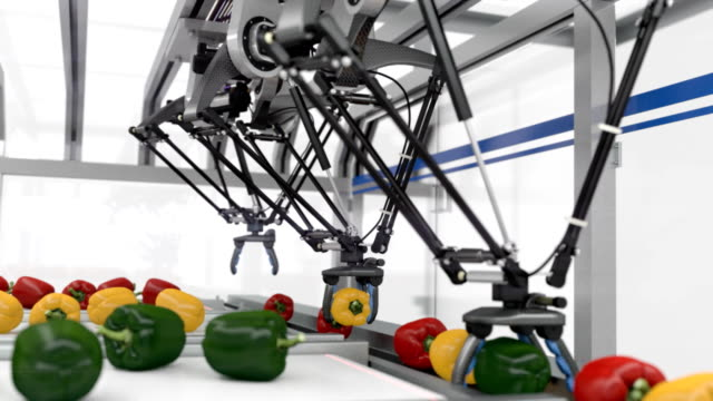 stockvideo's en b-roll-footage met futuristic packing line - seamless loop - peper groente