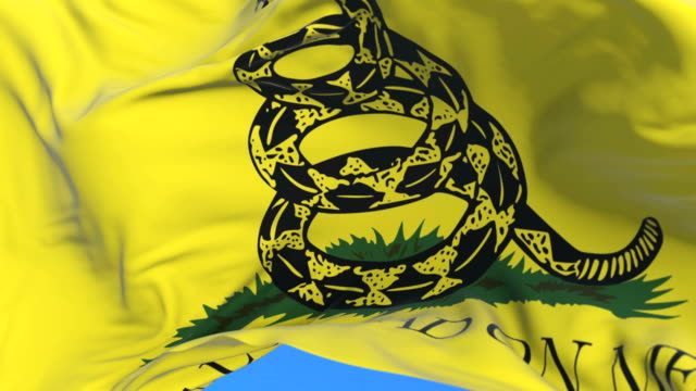 Gadsden Don't Tread On Me Flag waving at wind in slow with blue sky, loop video