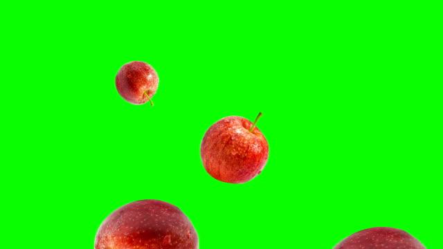 gala apple fallen - apple stock-videos und b-roll-filmmaterial