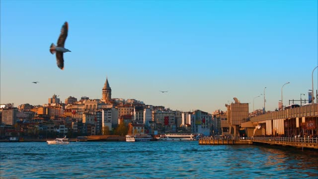 Galata Tower in istanbul City of Turkey.  View of the Istanbul City of Turkey with bosphorus, seagulls and boats.