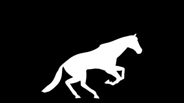 galoppo cavallo (loop) - scarpe video stock e b–roll