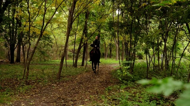 Gallop in park: Young female rider on the horse on a shady forest gallop. Horseback riding on a sunny day. Horse riding in the summer forest