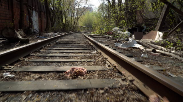 garbage along the abandoned railway line