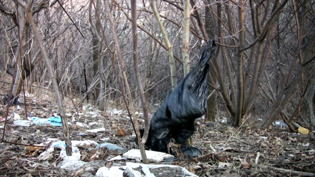 Garbage bag in the forest. video