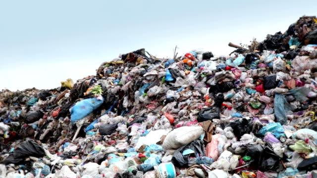 Garbage Dump video