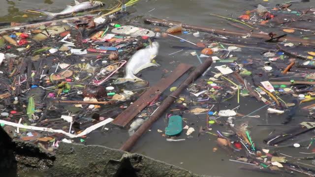garbage floating on the river. - ölü stok videoları ve detay görüntü çekimi