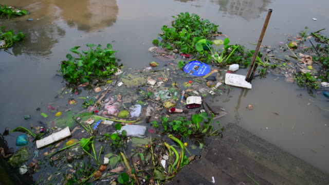 Garbage in the river, Consequences of urban water pollution