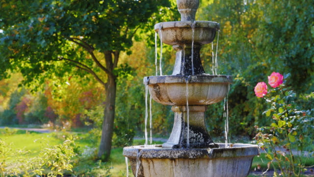 Garden architecture. A small fountain, near the fountain grow roses video