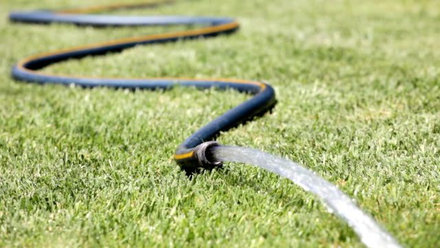 Garden Hose Watering the lawn with a garden hose water wastage stock videos & royalty-free footage