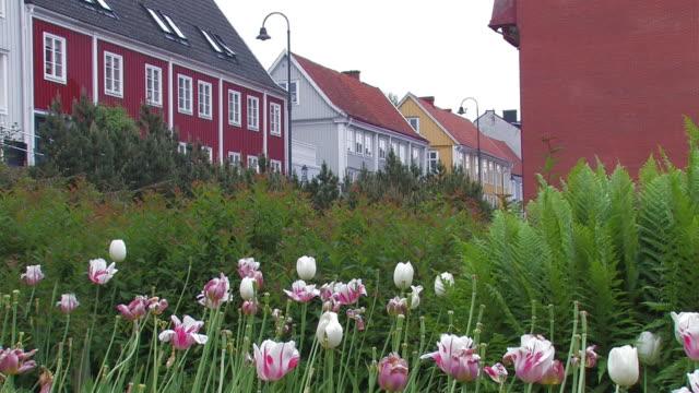 garden in the town video