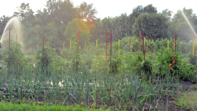 Garden Irrigation video