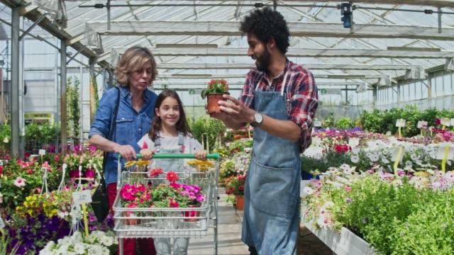 Propriétaire de jardin pépinière aidant les clients avec des plantes fleuries - Vidéo