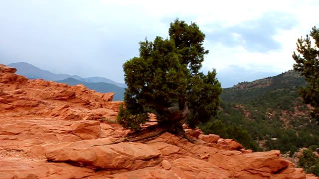 giardino del gods & pikes peak - red rock video stock e b–roll