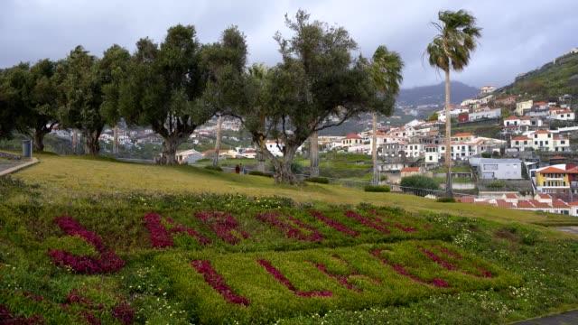 vídeos de stock e filmes b-roll de garden park jardim ilhéu with flowers in câmara de lobos, madeira - ilha da madeira