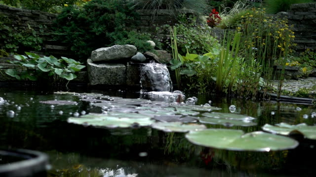 garden pond with waterfall and plants - fountains stock videos & royalty-free footage