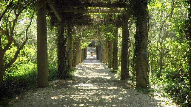 Garden Tunnel (1 of 2)