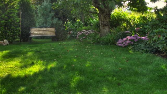 Garden video