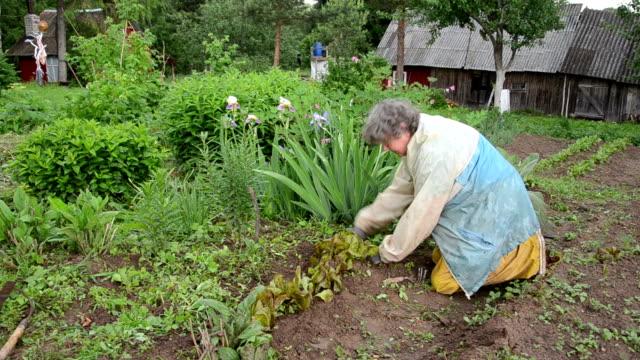 garden work senior video